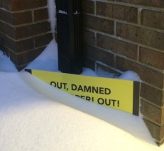 Out Damned Developer and Snow